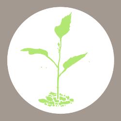 Logo Gemeingütertag der GEMEINGÜTER-Initiative von Pauluskirche und Kultur