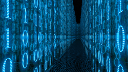 Der digitale Lebensraum